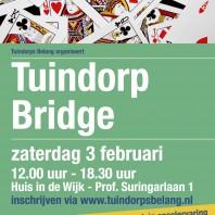 Tuindorp Bridge