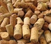 Masterclass wijnproeven